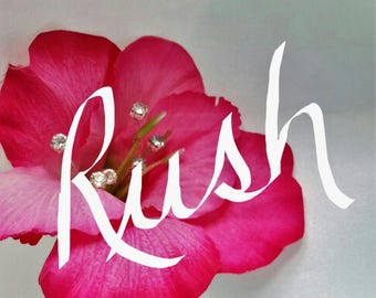 RUSH ORDER - Items created and shipped within 5 business days!