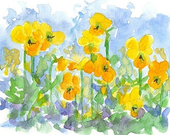 Yellow Pansy Flowers Original Watercolor Painting Johnny Jump Up