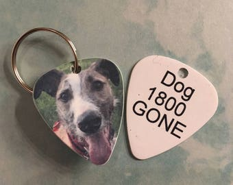 Personalized Dog / pet ID tag/ Guitar pick