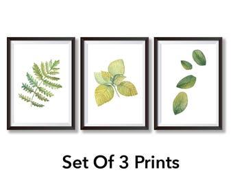 SET Of 3 Botanical Prints - Botanical Art Nature Print Botanical Illustration - Botanical Print Set Botanical Poster - Botanical Art Print