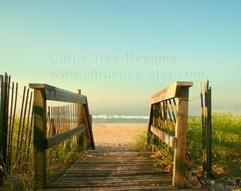 Beach Boardwalk Photographic print Ocean view Seashore Dunes Morning Walk Meditate Sand Sea grass blue green