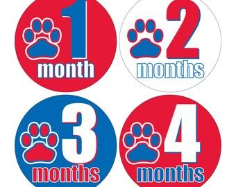 12 Monthly Baby Milestone Waterproof Glossy Stickers - Louisiana Tech University Dawgs - Design M026-03