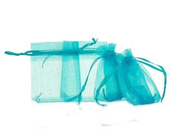 Light blue Organza Pocket bags