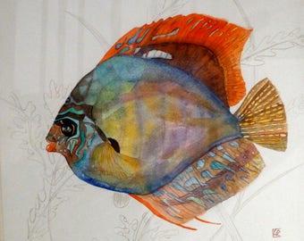 painting original, Original Art, Watercolor Fish discus, original art, animal watercolor art watercolor