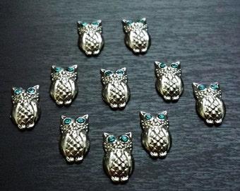 Owl Floating Charm for Floating Lockets-Blue Crystal Eyes-Gift Idea