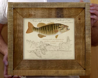 Framed Smallmouth Bass - 8 x 10 inch print by Matt Patterson, fish print