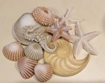 Lot of 11 Realistic Seashell Soaps - Beach, Soap, Nautical, Beach Wedding, Wedding Favors, Beach Theme, Guest Soap, Starfish, Custom Orders