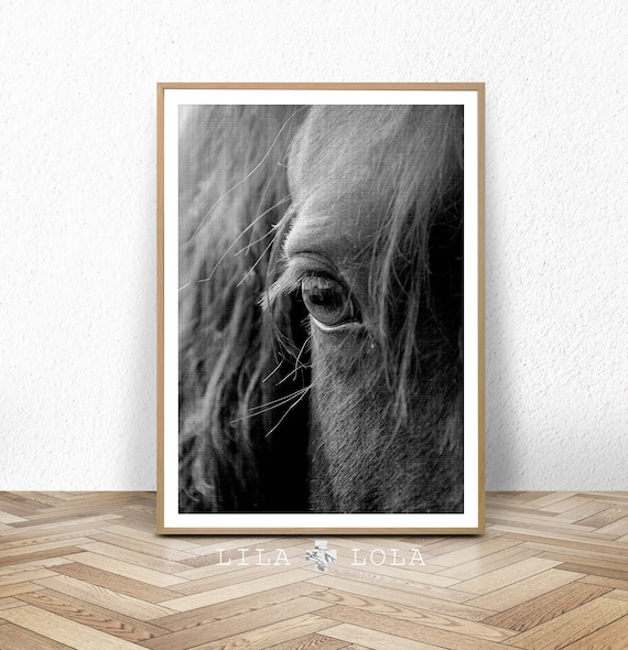 Horse Print, Horse Eye Photo, Black and White Photography, Digital Download, Printable Large Poster, Photography, Horse Decor, Modern Horse