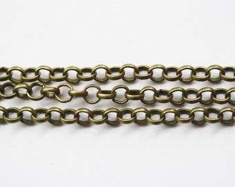 Brass Rolo Chain 5 Feet - #500