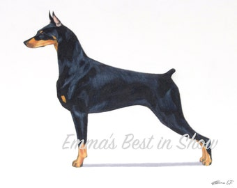 Doberman Pinscher Dog - Archival Fine Art Print - AKC Best in Show Champion - Breed Standard - Working Group - Original Art Print