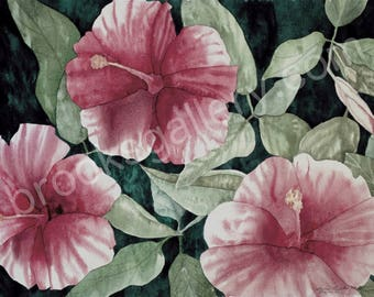 Original Fine Art  Watercolor Painting - Hibiscus Bloom by Bonnie Brooks