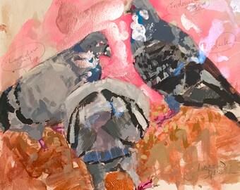 Pigeons on Pink