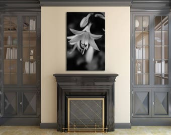 Floral Nature Photograph Hosta Bloom in Black & White - Fine Art Canvas - Home Decor Unframed Wall Art Prints