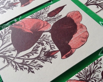 Red POPPY FLOWERS greeting card pack set of 8 letterpress garden farmers market vintage engraving