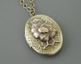 Vintage Necklace - Locket Necklace -  Baby Chic Necklace - Hen Necklace - Chicken Necklace - Chloes Vintage Jewelry - Handmade Jewelry