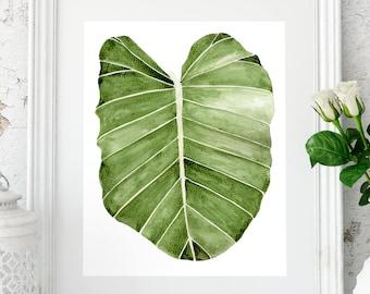 Tropical print, Palm leaf, Palm print, Plant print, Banana leaves, Tropical leaf, Palm leaves, Tropical decor, wall decor, Botanical print