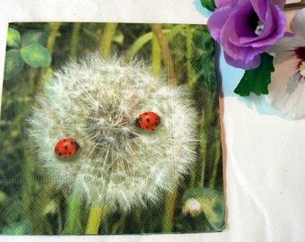 2 Napkins ladybugs on dandelion from Germany