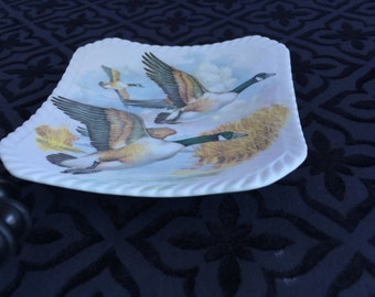 Royal Adderley Bird Trinket or Candy Dish, Bone China, English, Accent Piece, Gift for Her, Valentine's Gift, Birthday Gift, Christmas Gift