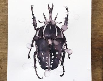 Horned Beetle Print