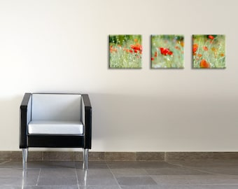 Set of 3 red poppies printed on canvas art - floral art - housewarming gift idea