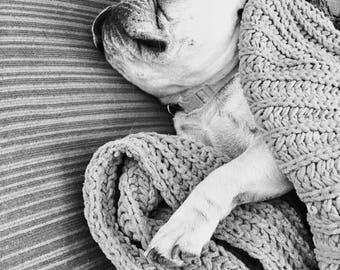 Sunday Snoozes