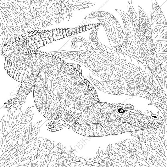 Alligator 3 Coloring Pages Animal Book