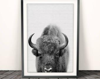 Buffalo Print, Bison Wall Art, Nursery Decor, Kids Room Poster, Black and White, Modern Minimal, Digital Download, Boys Room Art