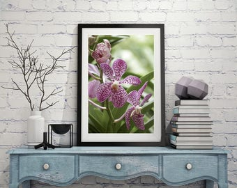 Orchid Photography Digital Download Printable Nature Photography Macro Photography Fine Art Photography Orchid Print Wall Art Wall Decor
