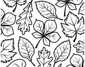 """Discontinued - Darice® Embossing Folder Borders - Fall Foliage - 4.25"""" x 5.75"""", scrapbooking, card making, invitations, greeting cards"""