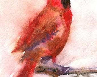 Cardinal Painting - Bird Art - Cardinal watercolor - Fine Art Print - Winter Bird