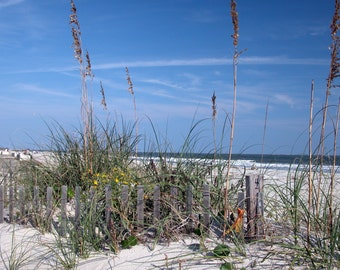 The Beach, Hilton Head, South Carolina Landscape, Fine Art Photography
