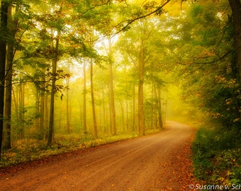 Golden Morning, Nature Photography, Autumn Wall Decor, Fine Art Print, Fall Colors, Fog, Road, Magical, Enchanted Forest, Fairy Land
