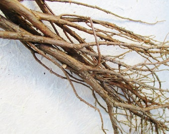 Dried Juniper Branches, Sacred Wood, Sweat Lodge Ritual, Craft Supply, Incense Smudge Wood, Juniperus Communis, Wiccan Pagan Purification