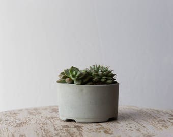 Mother's Day Gift for Her, Medium Concrete Planter