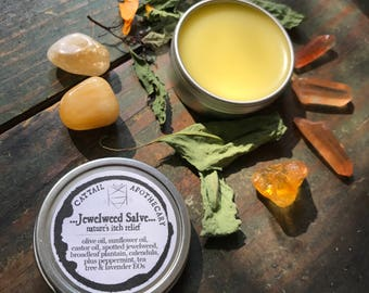 Anti-Itch Salve / For Poison Ivy, Mosquito Bites, Bee Stings / Jewelweed Plantain Calendula / Itch Relief / Herbal First Aid / Organic