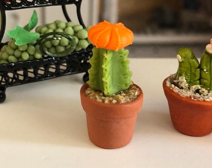 Featured listing image: Miniature Cactus, Orange Moon Cactus in Clay Flower Pot, Dollhouse Miniature, 1:12 Scale, Accessory, Decor, Mini Plant
