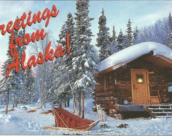 Vintage Postcard Greetings from Alaska United States Scenic Winter Cabin View Dog Sled Forest 1980s Photochrome Card Postally Unused