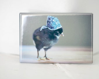 Chicks in Hats Chicken In A Blue Bandana Rectangle Magnet Baby Animals