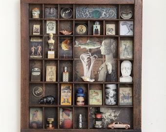 Cabinet of Curiosities No.6