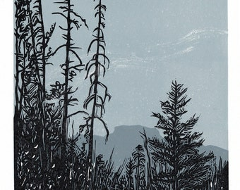 On Fenland Trail, Banff, 3 Color Linocut Reduction Art, Hand Pulled, Limited Edition, Printmaking Original