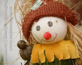Autumn Fall Scarecrow & Crow - Nature Photography Print