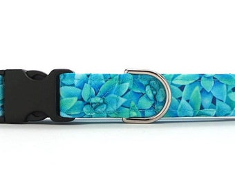Blue Succulents CANVAS Dog Collar (Martingale, Buckle or Tag)
