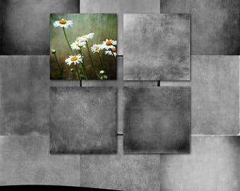 Fine Art Photoshop Textures: Shadowland