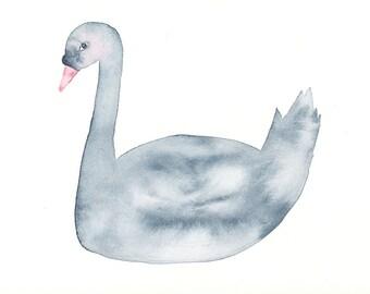 Blushing Swan, Original Bird Painting, Watercolour, Grey Blue and Pink