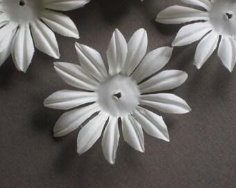 White Daisy Flower  Petals  (36)