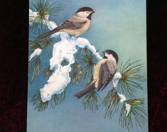 Black Capped Chickadee Print from a vintage Ideals Magazine, heavyweight paper 8 x 10 3/4 inches, FREE Shipping to CA and US