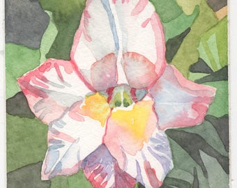 Gladiolus Watercolor