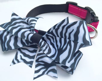 Zebra Stripe Bow and Pink Dog Collar