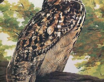 "Eagle Owl ""Buy one, choose another free"" eagle, wildlife, animal prints, bird prints, wildlife prints, animals, birds"