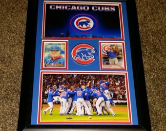 Chicago Cubs / World Series Champions
